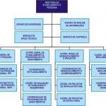 modelos-de-organograma