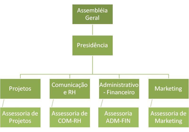 organograma-empresarial-pronto